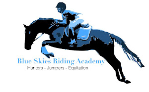 Blue Skies Riding Academy