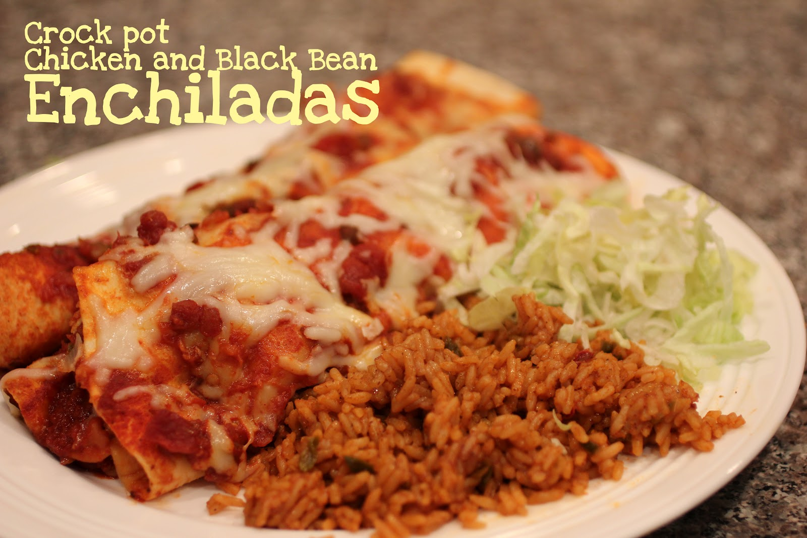 Repeat Crafter Me: Crock Pot Chicken and Black Bean Enchiladas