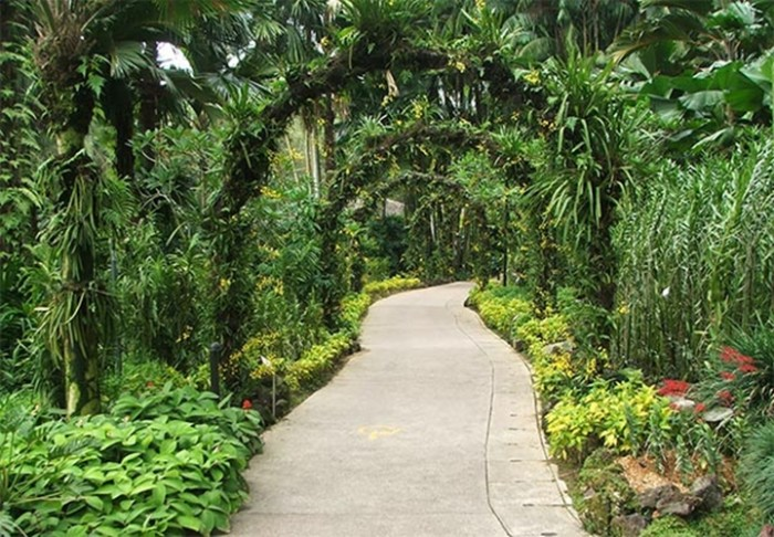 Tropical garden design ideas native home garden design for Tropical garden designs