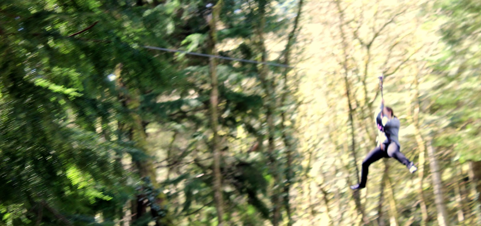 person mid zip wire in woods