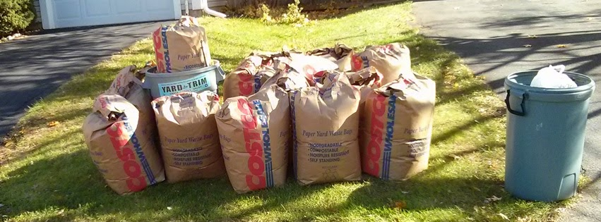 yard trim bags at the curb for collection