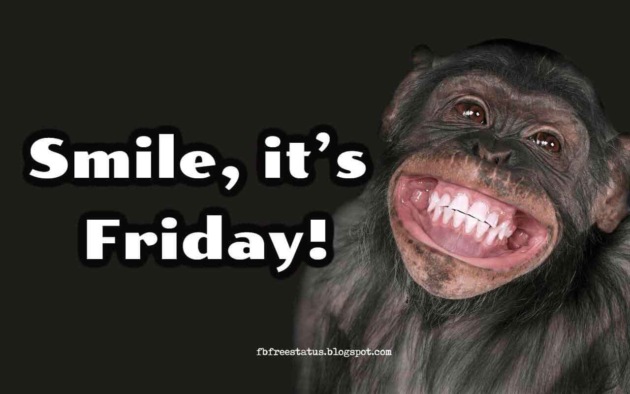 Friday funny quotes