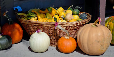 pumpkins and gourds in a basket at Greenfield Village