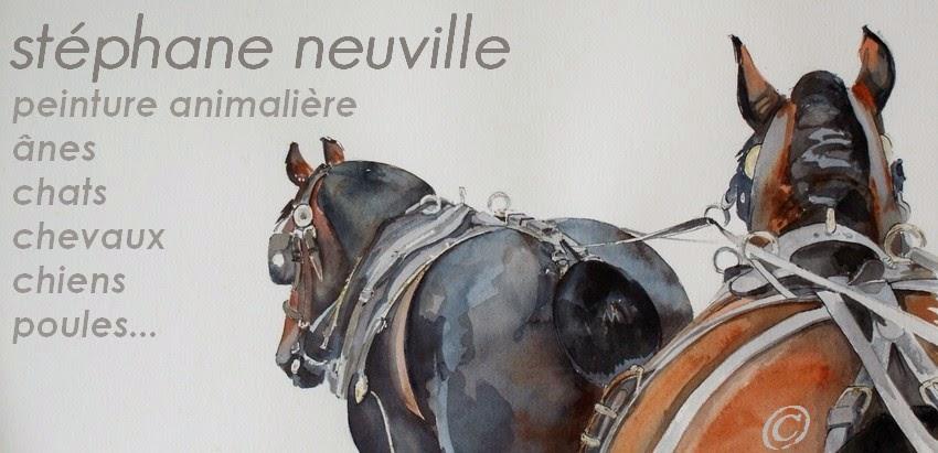 Stéphane neuville, peinture animalière: aquarelle,  sumi-e,  gravure,  pastel, terre cuite.