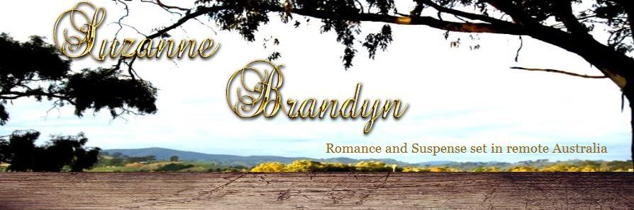 Suzanne Brandyn Author Blog.