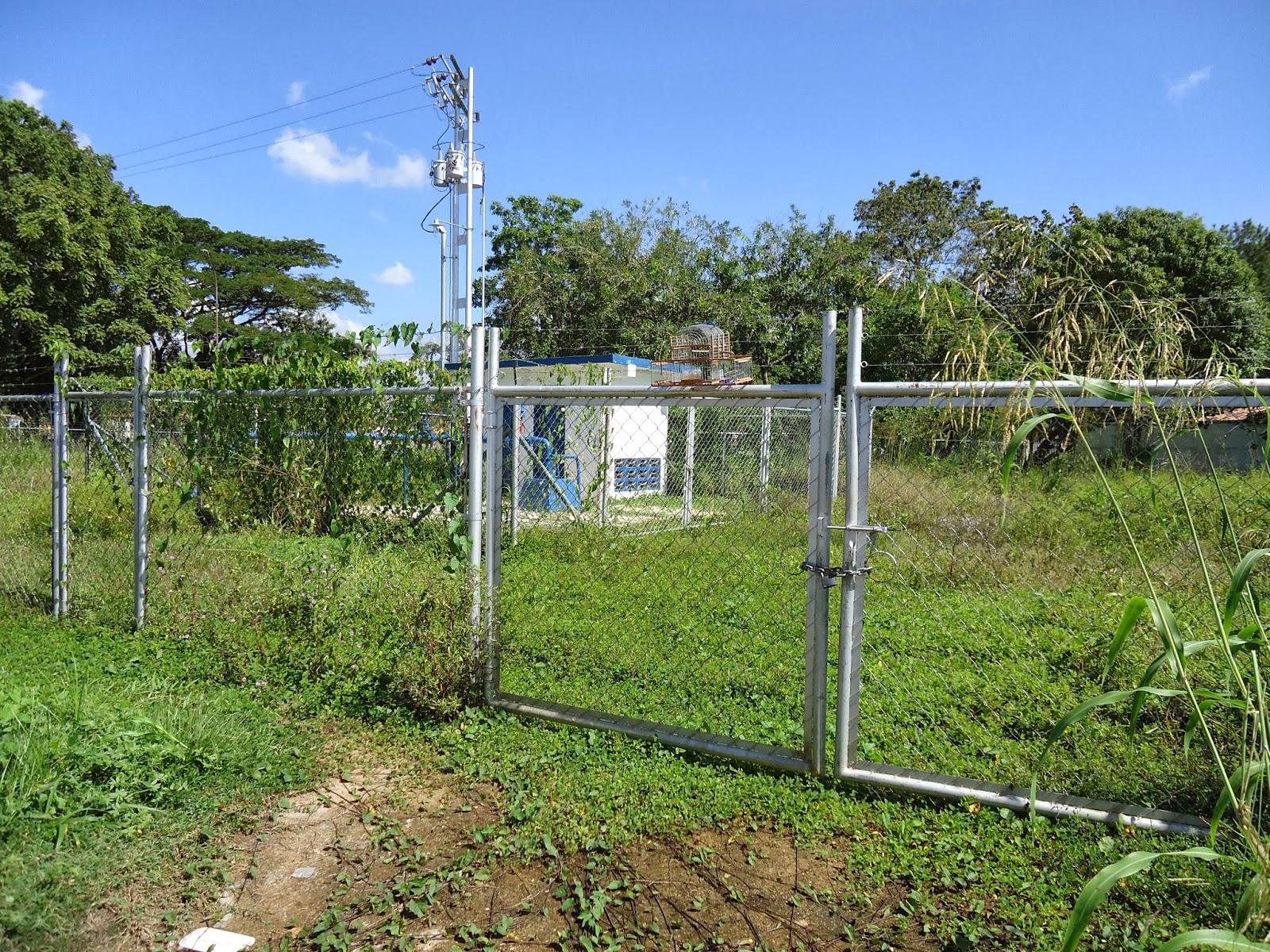 Jard n bamb c a aecom texaco urbanizaci n el molino for Jardin bambu