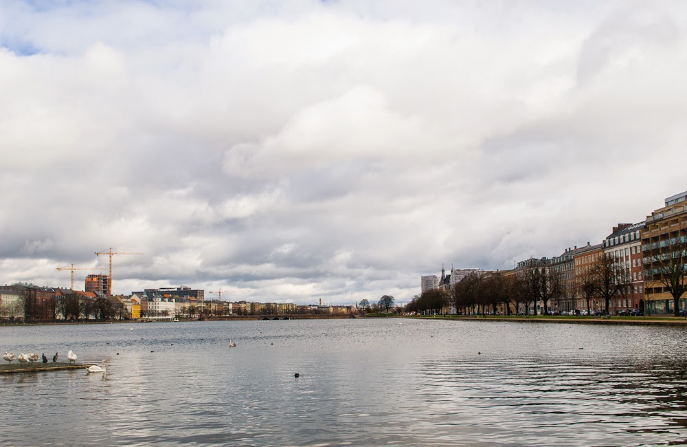 Copenhagen Lake soerne