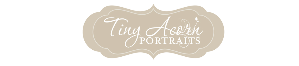 Tiny Acorn Portraits ~ Minneapolis Photographer ~ 952.924.9142