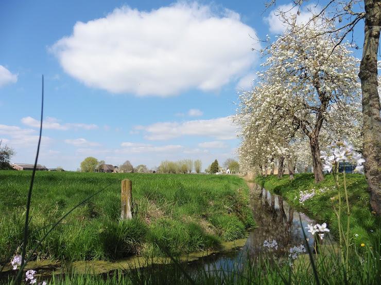 Hollands voorjaar in Woerden