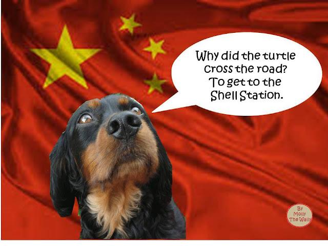 Molly The Wally Goes To China!