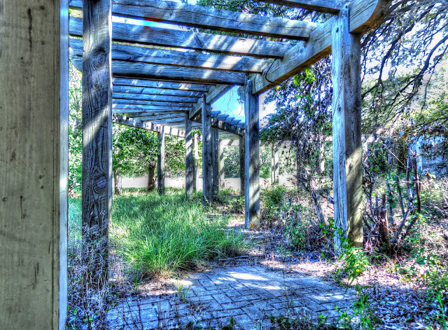abandoned winery Pergola - Cedar Park Texas