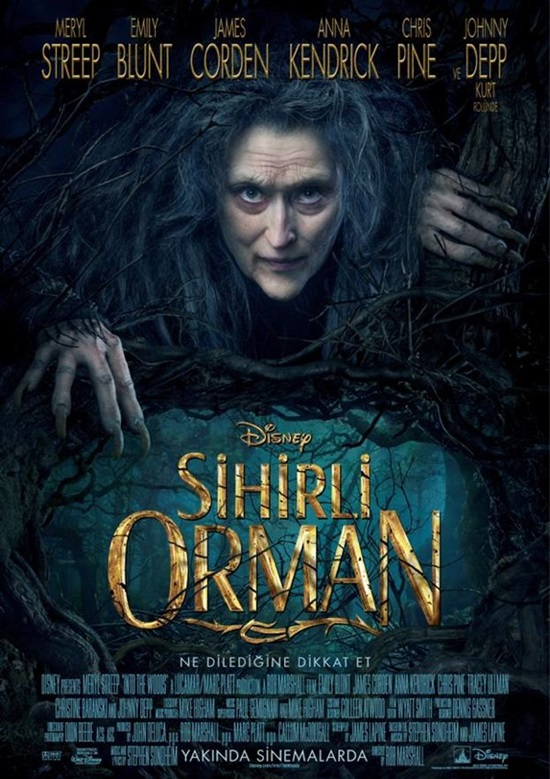 Sihirli Orman (2014) 720p Film indir