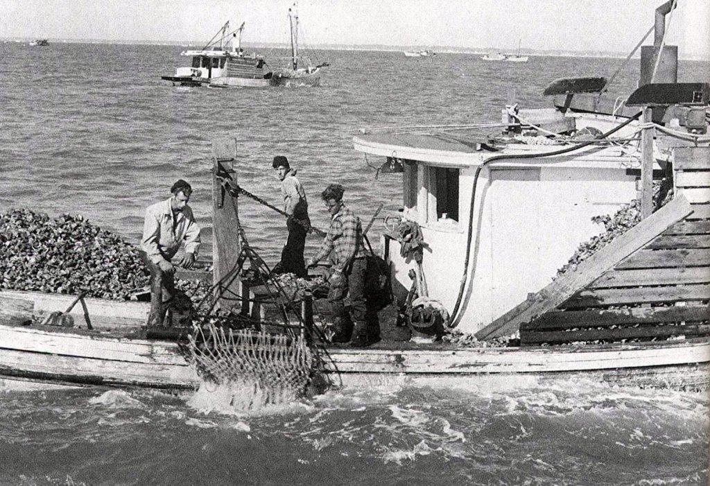 Sackettdoodles vintage photos of biloxi 39 s fishing heritage for Fishing in biloxi ms