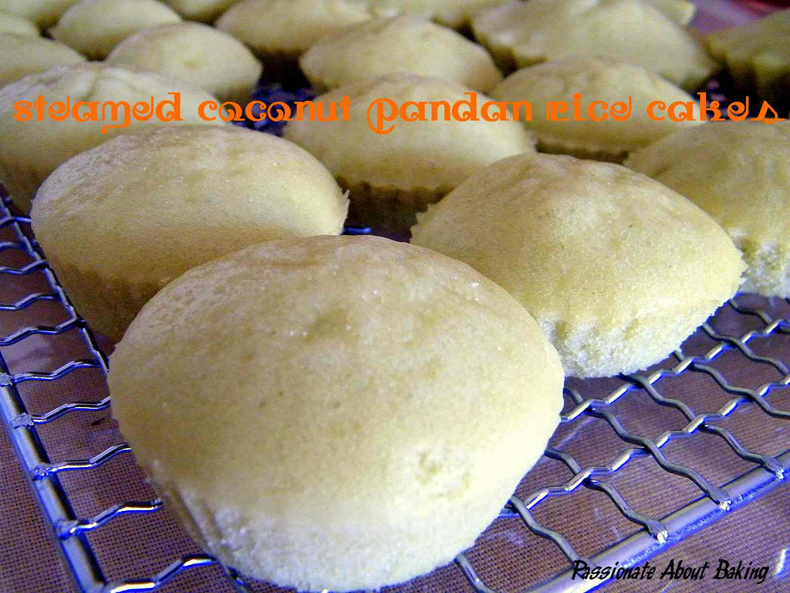 Steam Pandan Coconut Rice Cakes Passionate About Baking