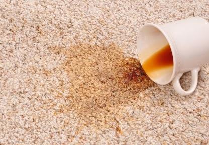 FREE Hardwood, Carpet or Tile Cleaner