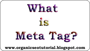 organic seo tutorial about blogger meta tag