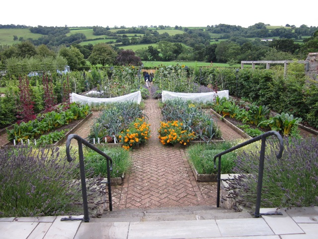 The Organic Garden at Holt Farm