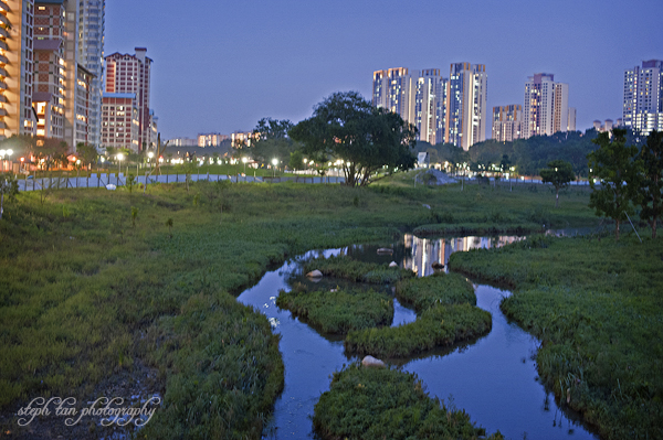 bishan park river plains