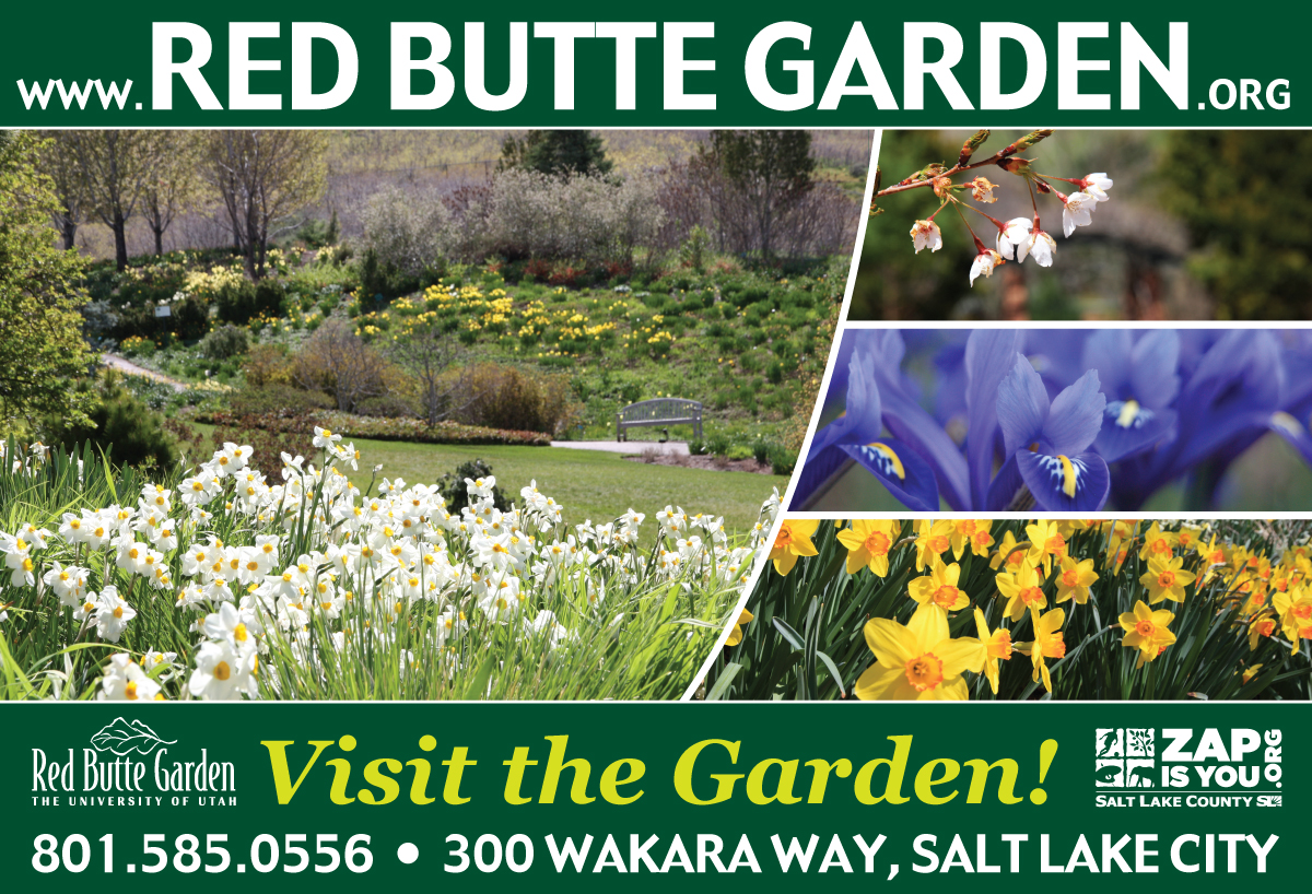 Red Butte Gardens 2014 Concert Series Is Right Around The Corner. Tickets  For Garden Members Go On Sale April 28th And May 5th For General Public.
