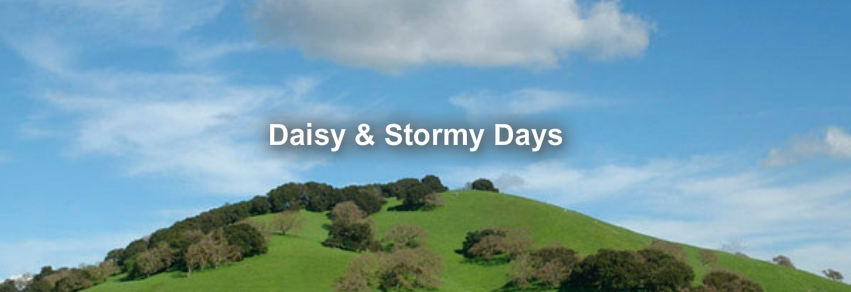 Daisy and Stormy Days