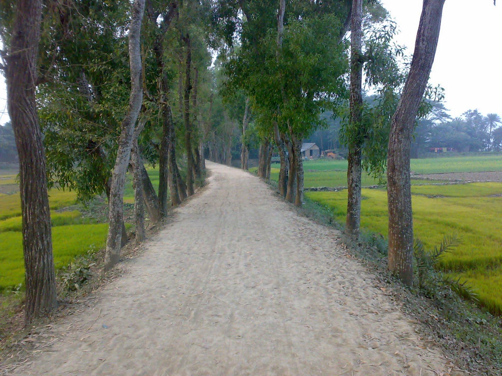 most of bangladesh village road is broken
