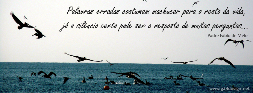 Imagens com frases de Padre Fábio de Melo para Facebook. 2