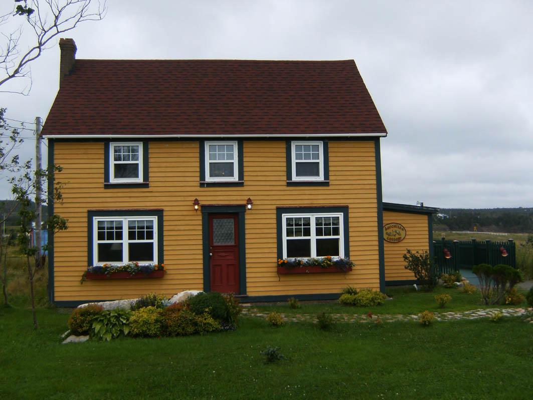Conversation with a city for Newfoundland houses