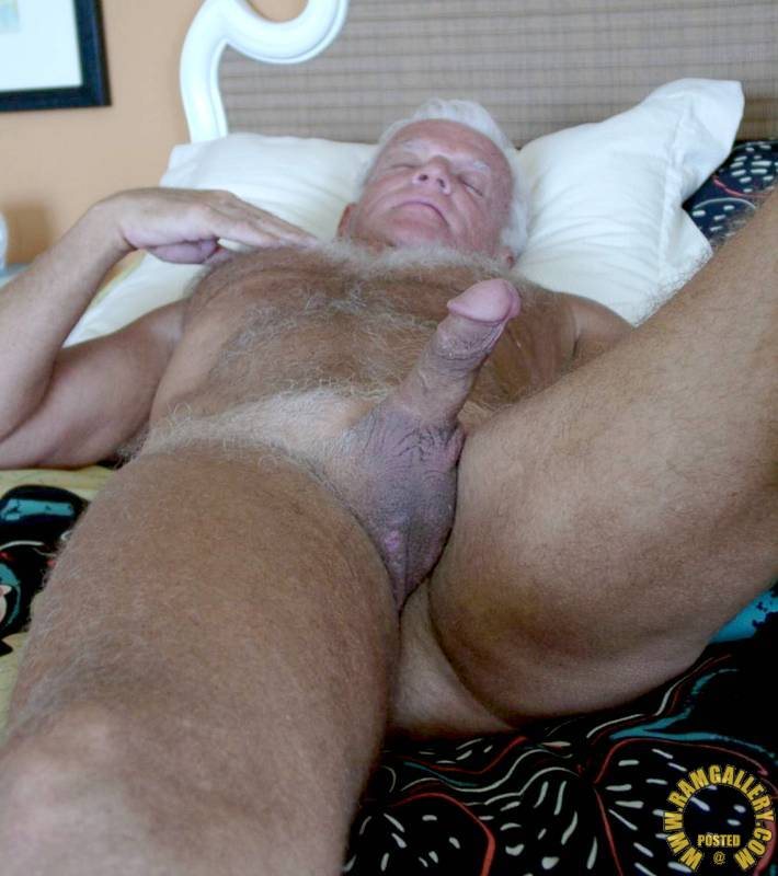 Sugar Daddy Silver Gay Gallery Naked Hard Cock Hairy