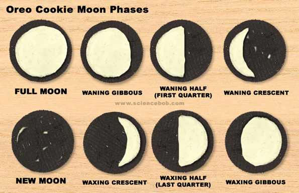 Science on Oreo Cookie Moon Phases