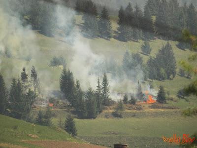 Incendiu de vegetatie la Toplita
