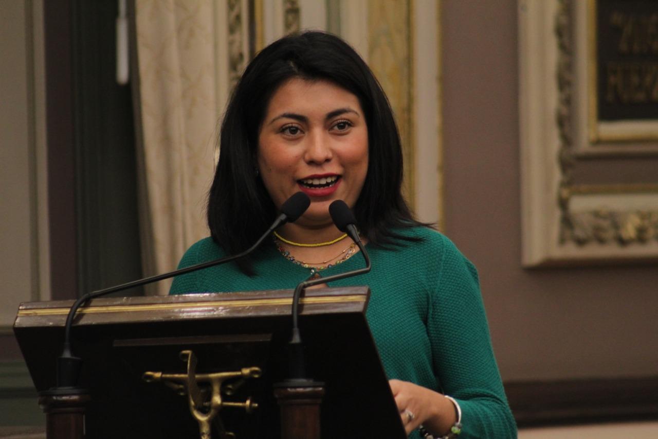 Diputada del PES presenta iniciativa para que se sancione a quien cometa Ciberacoso