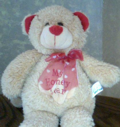 The Teddy Bear Shelter: My Honey Bear