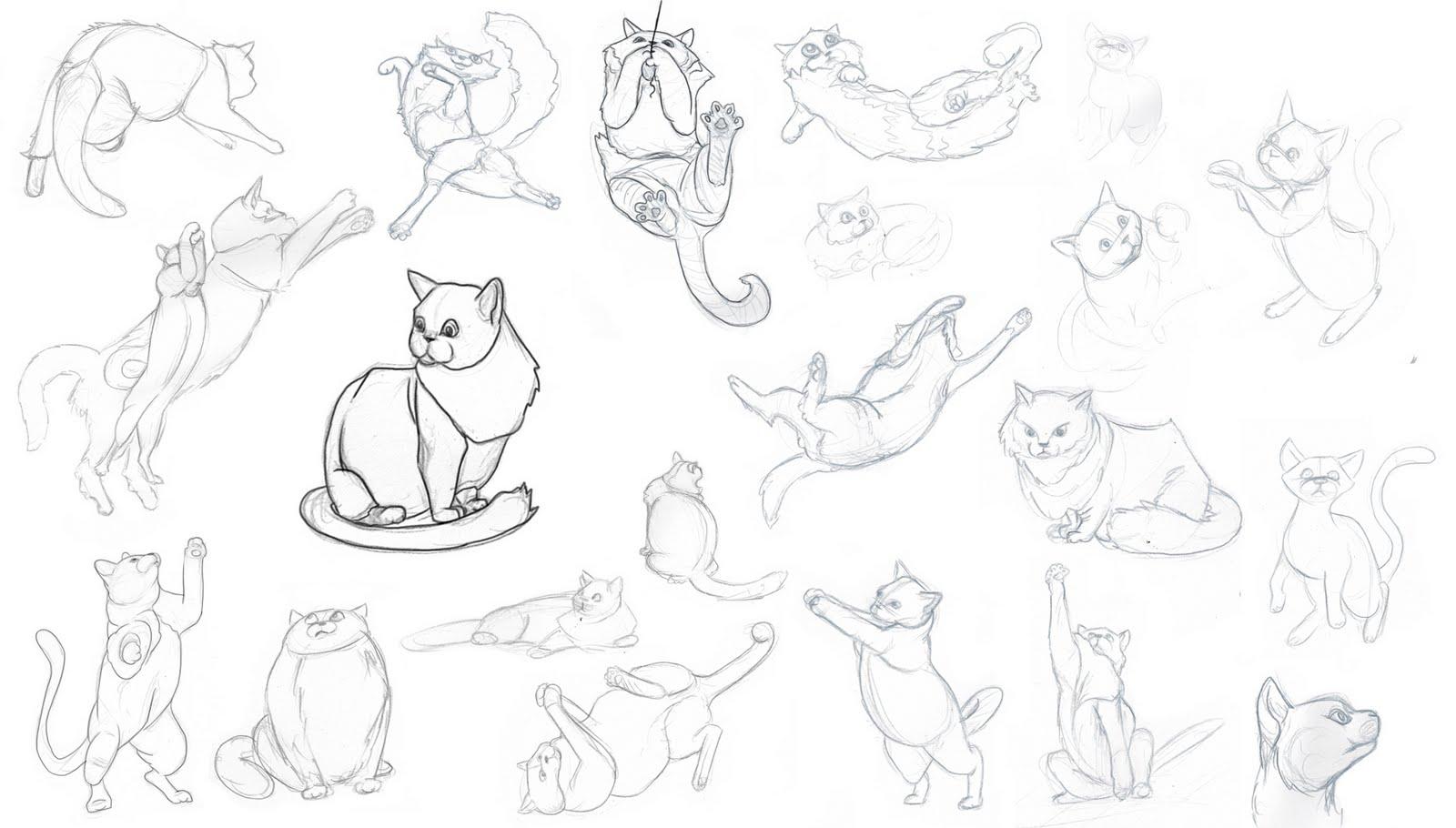 Corso di grafica e disegno per imparare a disegnare come for Disegno gatto facile