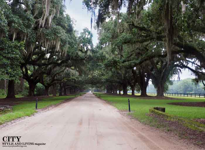 boone hall plantation fashion style, fashion blogger, charleston fashion, live oak trees