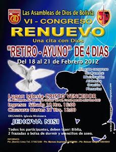"""VI CONGRESO """"RENUEVO 2012"""""""