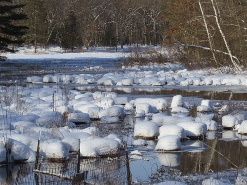 snow pillows on creek