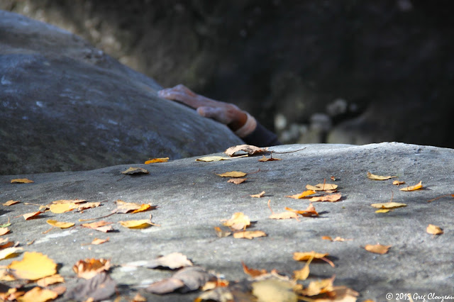 Main, escalade d'automne, Franchard Isatis, Fontainebleau, (C) 2015 Greg Clouzeau