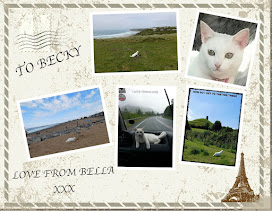 A POSTCARD FROM BELLA