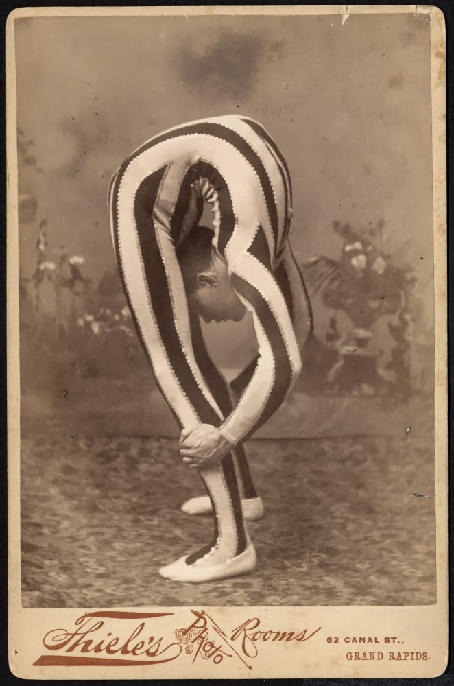 contortionists essay