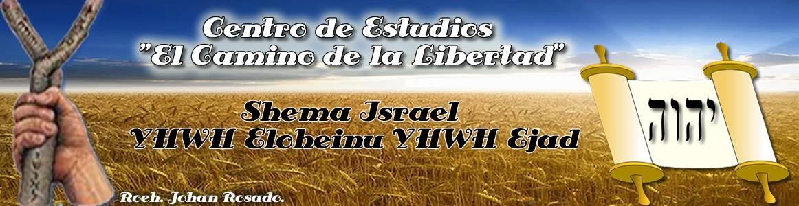 """Centro de Estudios """"El Camino de la Libertad"""""""