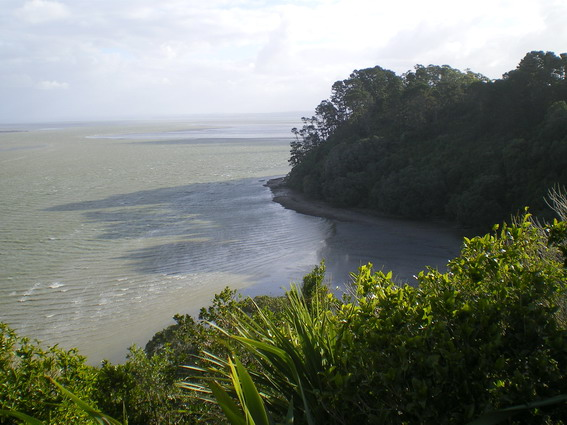 on the Manukau Harbour.