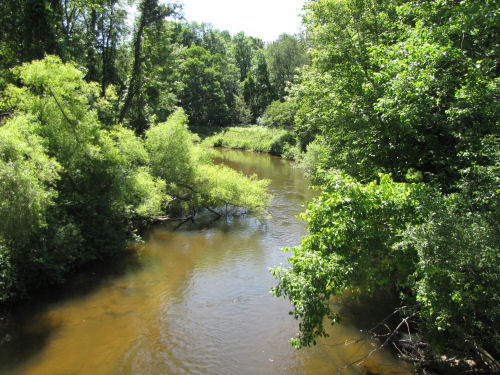 South Branch of the Pere Marquette River