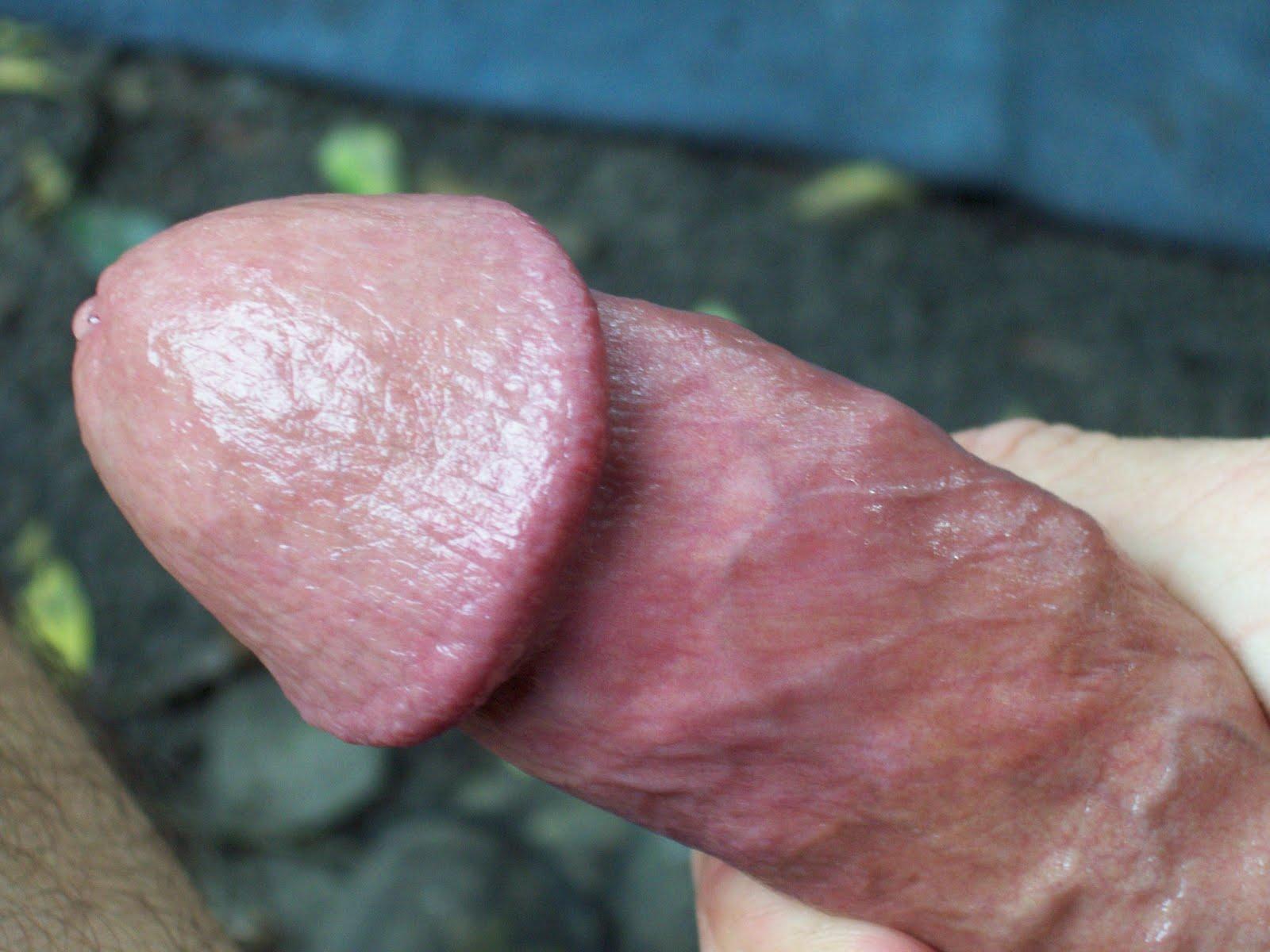 The ass, Addiction endorphins masturbation