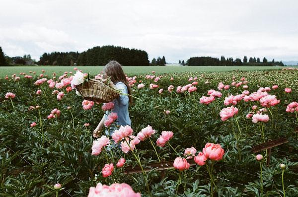 chica recogiendo flores en el campo