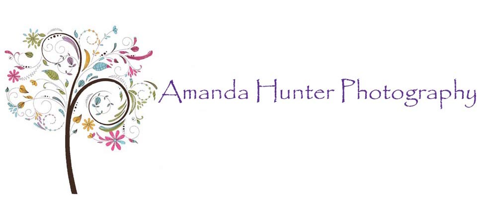 Amanda Hunter Photography