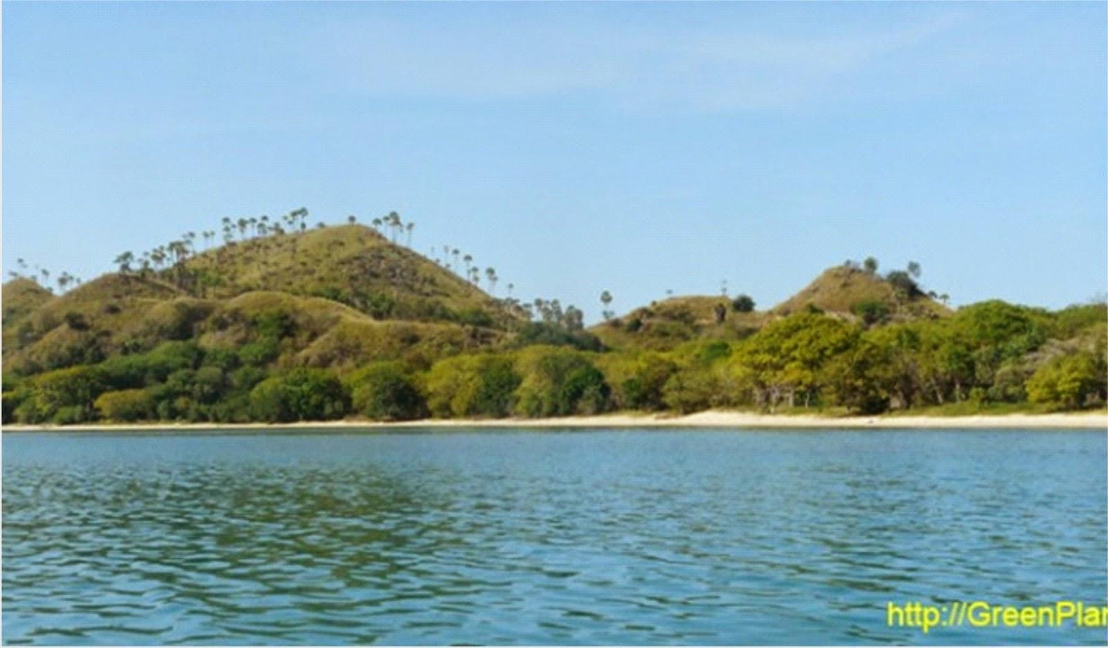 Beredar Isu Pulau Kelapa Bakal Dijual dengan Harga Rp12 Milyar