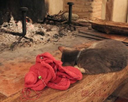 Chat qui ronronne devant la cheminée