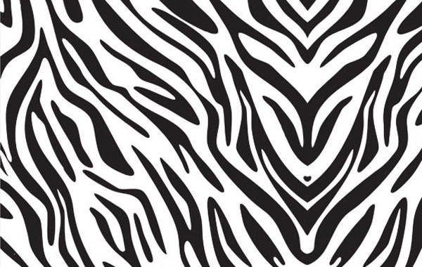 Best Animal Zoo Zebra Print