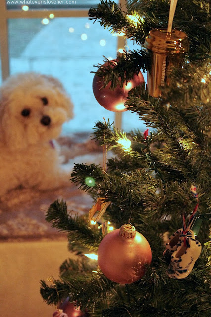Emmie and the Christmas Tree