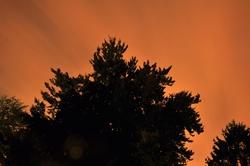 Laue Sommernacht...